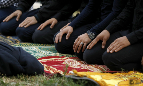 Совет муфтиев поддержал создание «халяльных поселков»